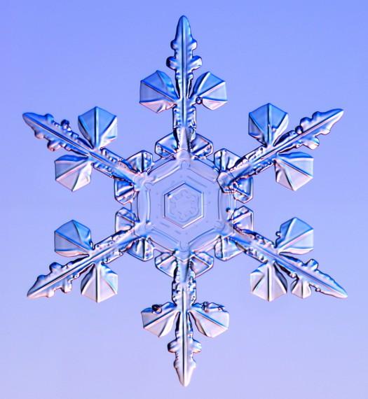 Льда под микроскопом фотогалерея
